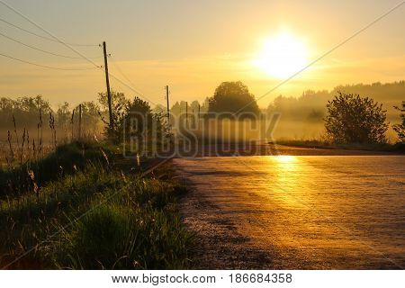Country road bathed in the morning sun with fog
