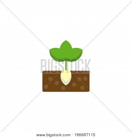 Flat Plant Element. Vector Illustration Of Flat Sprout Isolated On Clean Background. Can Be Used As Plant, Sprout And Gardening Symbols.