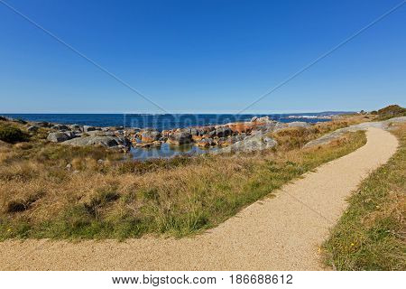 Smooth path along Bay of Fires with beautiful scenic view leading to lookout. Blue sea water with orange lichen growing on granite rocks formations, rocky coastline