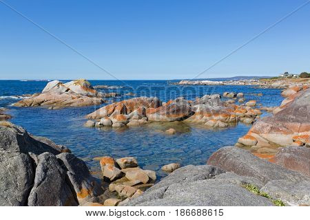 Beautiful scenic view at Bay of Fires. Turquoise waters with orange lichen growing on granite rocks formations, rocky coastline in Tasmania, Australia