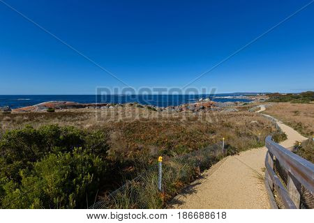 Smooth path along Bay of Fires with beautiful scenic view leading to lookout. Blue sea water with orange lichen growing on granite rocks formations, rocky coastline in Tasmania, Australia