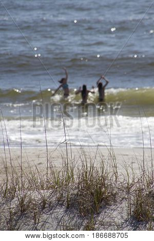 Three blurry young women playing in breaking ocean waves on a sunny day in the background and a sand dune with spikey brown grass in the foreground