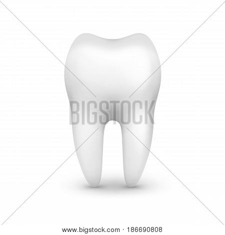 Vector single white molar tooth side view isolated on background