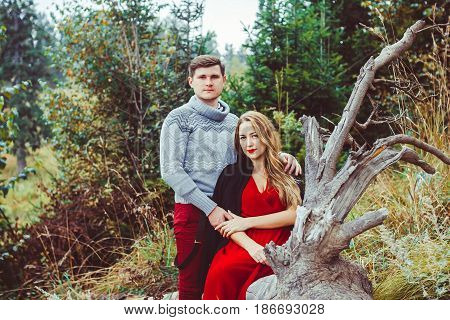 Couple loving sits in the woods on the tree
