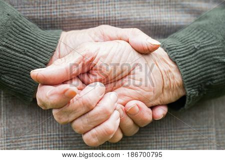 Close up picture of a senior woman's wrinkled hands