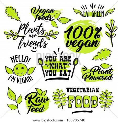 Organic healthy logo labels, hand lettering and light green color design for vegan society poster, vector flat style illustration isolated on white background