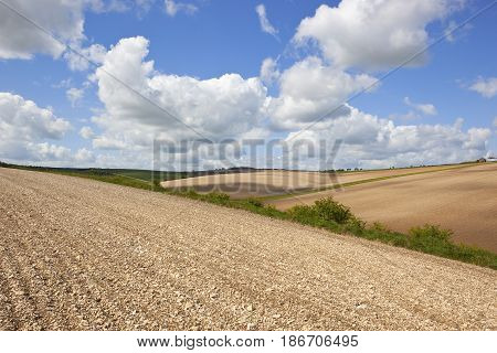 Rolling Hills And Chalky Soil