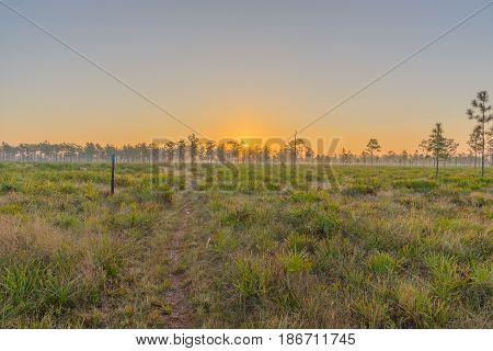 Sunrise at the Triple N Wildlife Management Area in Central Florida