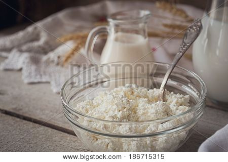 Fresh dairy products. Milk cottage cheese sour cream and wheat on rustic wooden background. Organic farming dairy concept.