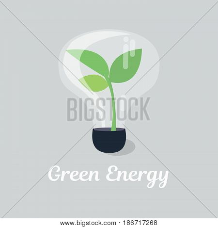 plant tree growing seedling in lamp vector icon symbol in flat isometric design on color background