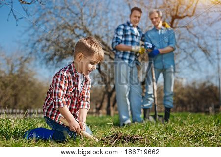 Rising generation. Focus on a little boy standing on knees while digging into the soil with a stainless scoop with his dad and grandfather behind looking at him