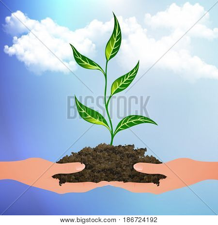 The plant sprouted from the clods on the palms, vector art illustration.