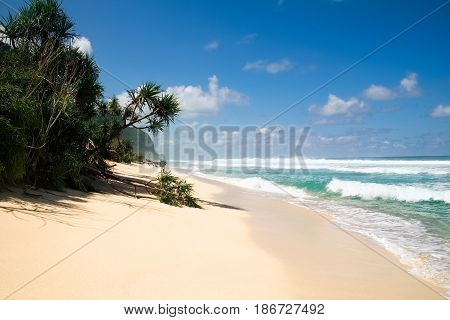 Beautiful secret tropical sea beach with gorgeous waves on the island dream paradise of Bali nature. Indonesia outdoor landscape with fantastic white sand shoreline with palm trees and blue ocean