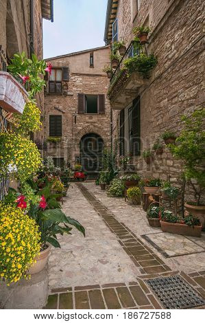Decorated alley with flowers in the old town of Spello, Umbria