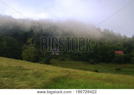 Landscape of Bohemian Switzerland with forests after spring rain