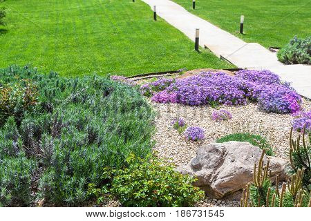 Alpine Garden And Sloped Lawn With Path