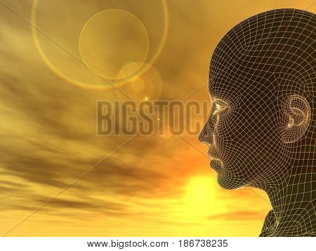 Concept or conceptual 3D illustration abstract wireframe young human female or woman head, sunset sky background