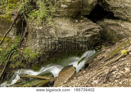 A spring coming out of a cave to start a waterfall.