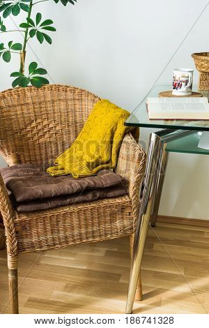 Living room interior woven rattan chair cushions knitted sweater open book tea cup green potted plant cozy atmosphere daylight