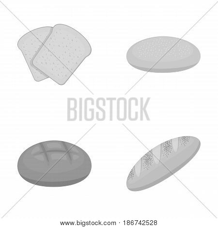 Toast, pizza stock, ruffed loaf, round rye.Bread set collection icons in monochrome style vector symbol stock illustration .