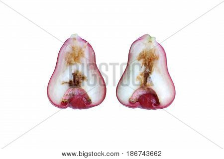 Rotten rose apple from the inside due to oriental fruit fly (Bactrocera dorsalis Hendel)