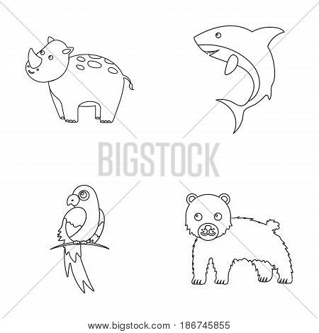 Rhinoceros, shark, parrot, bear.Animal set collection icons in outline style vector symbol stock illustration .
