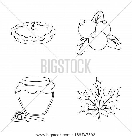 Cranberry, pumpkin pie, honey pot, maple leaf.Canada thanksgiving day set collection icons in outline style vector symbol stock illustration .