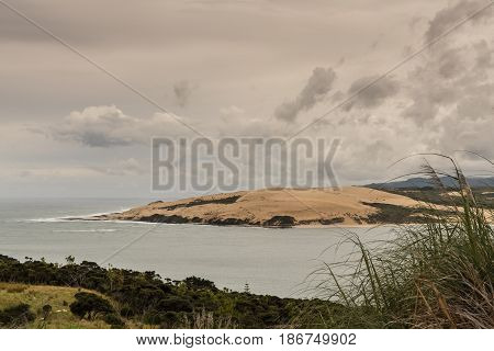 Bay of Islands New Zealand - March 7 2017: Exit to Tasman Sea from Hokianga Harbour shows closeup of large dune green bush in foreground all under heavy cloudscape.