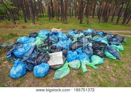 Illegal dumping of garbage in forest.Pile of Black, Blue and Green garbage bags in the forest ecology.