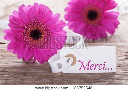 Label With French Text Merci Means Thank You. Pink Spring Gerbera Blossom. Vintage, Rutic Or Aged Wooden Background. Card For Spring Greetings.