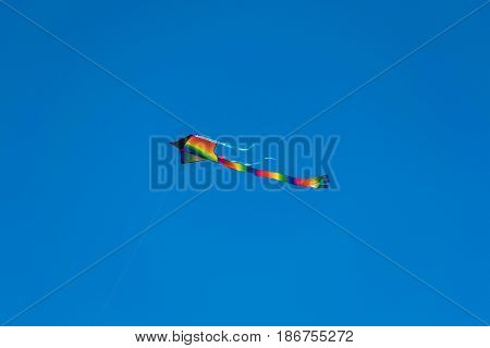 One Kite Flying-a single colorful kite with a long tail, flying up in the blue sky
