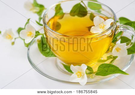 Close up image of jasmine tea in a glass cup over white background