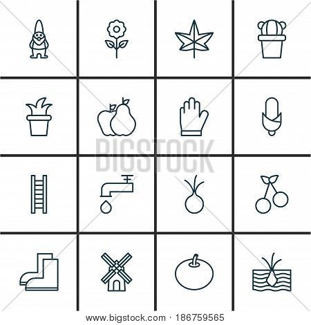 Set Of 16 Plant Icons. Includes Radish, Desert Plant, Stairway And Other Symbols. Beautiful Design Elements.