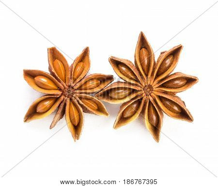 close up star anise on white background