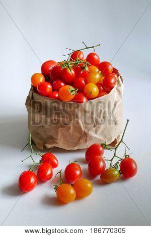fresh tomato from organic farm  in paper bag