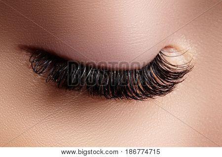 Beautiful macro shot of female eye with extreme long eyelashes. Perfect shape make-up and long lashes. Cosmetics and make-up. Closeup macro shot of fashion eyes visage