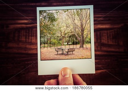 Male Hand Holding Polaroid Photo Of Autumn Scene - Empty Picnic Table, Foliage, And Bare Trees With