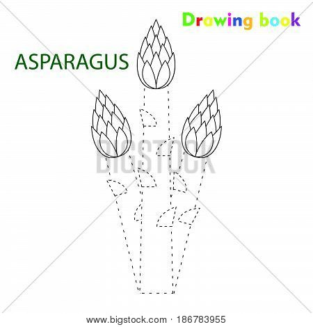 Asparagus coloring and drawing book vegetable design illustration