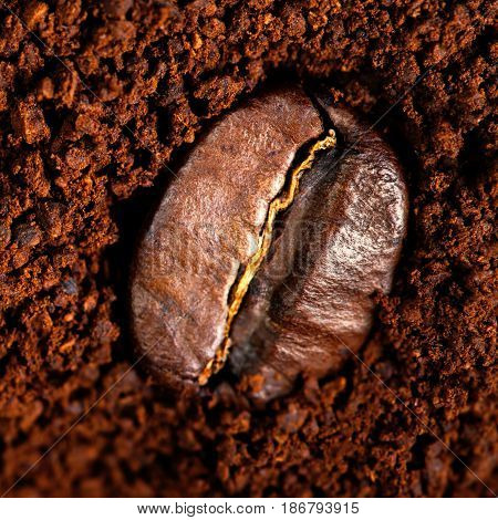 Ground Coffee with Roasted Coffee Beans copyspace. Espresso Texture macro