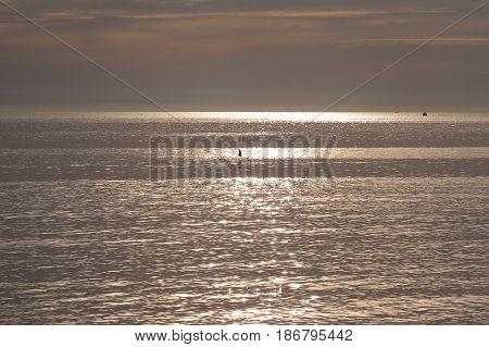 Semaphore beach South Australia sunlight sunset light over silver gold sea