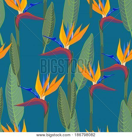 Strelitzia  pattern. Tropical flower, jungle leaves, bird of paradise.