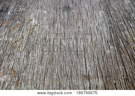 wood texture old pattern beautiful background macro select focus with shallow depth of field.