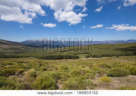 landscape green countryside trees blue sky and clouds in Lozoya Valley and Guadarrama Natural Park from Morcuera mountains in Madrid Spain Europe