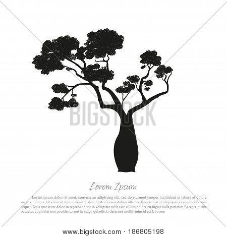 Black silhouette of a baobab on a white background. Australian nature. Desert landscape. Vector illustration