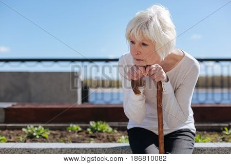 Daily activity of pensioners. Unhappy pleasant aged woman putting head on the hands and attentively keeping an eye on the birds