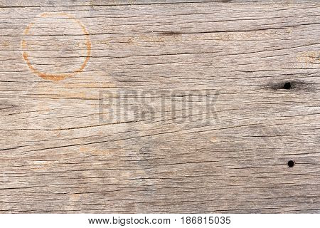 Wood texture, wood background for design. Wood motifs that occurs natural.