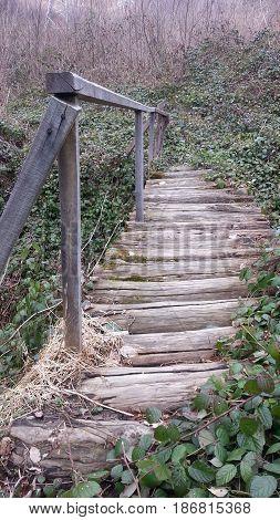 деревянный мост через лесной ручей парк природа