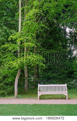 Empty Bench seat set under tall trees