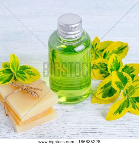 a bottle of organic liquid soap and homemade herbal soap bar with plants, yellow and green