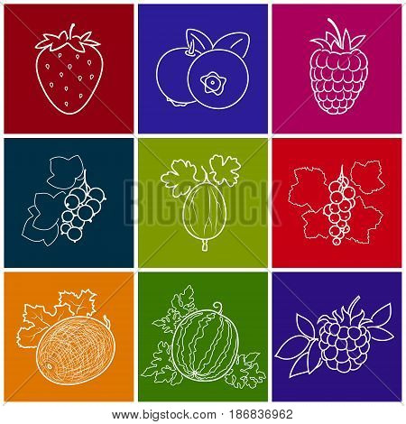 Fruit Berry Icons Melon, Strawberry, Raspberries and Blueberries, Gooseberry with Blackcurrant, Watermelon, Redcurrant and Blackberry on Colored Background, Thin Line Style Design, Vector Illustration